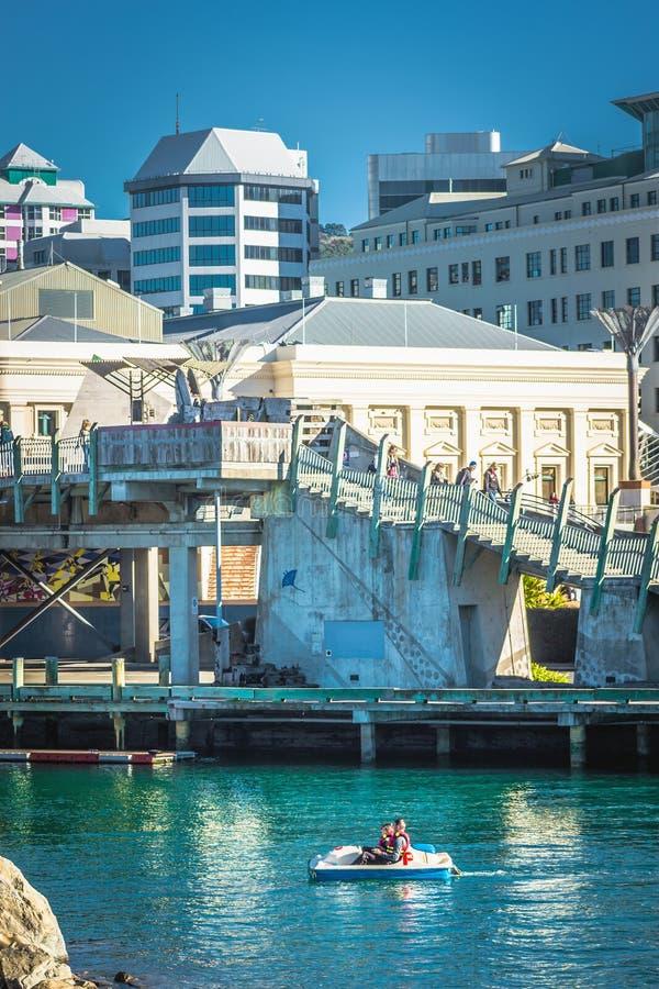 La gente fuori che si gode di in una barca del pedale sotto la città al ponte del mare sulla laguna di Whairepo immagini stock