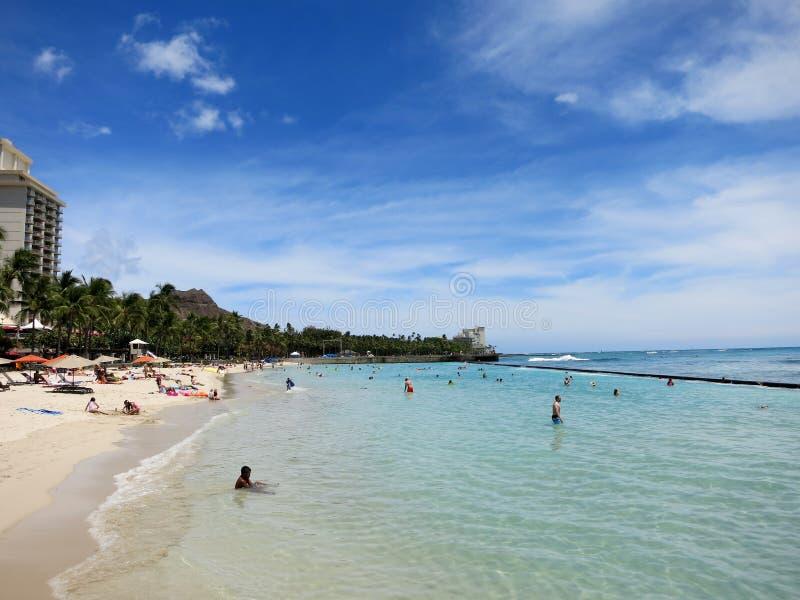 La gente gioca nell'acqua protetta e va in giro sulla spiaggia in Waikiki immagine stock libera da diritti