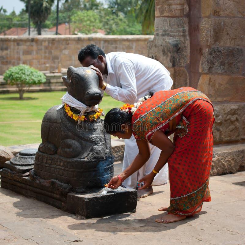 La gente india trae ofrendas a Nandi Bull en el templo de Gangaikonda Cholapuram fotografía de archivo
