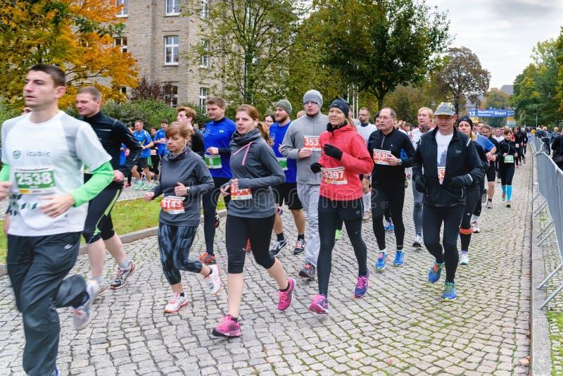 La gente joven y los jubilados funcionan con un maratón en Alemania, Magdeburgo, 18 oktober 2015 fotografía de archivo