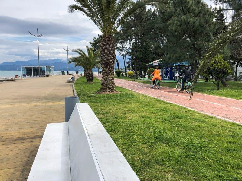 La gente monta una bici a lo largo de un callejón con las palmeras verdes en un parque en el mar tropical caliente Georgia, Tbili foto de archivo