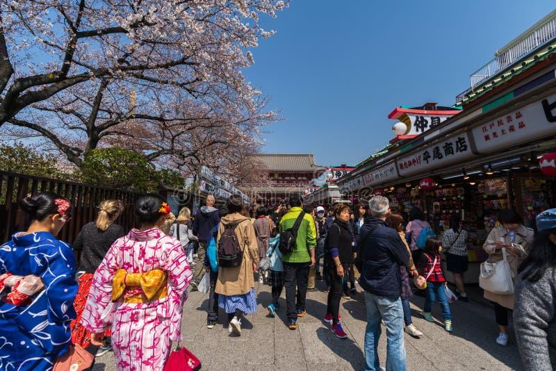 La gente no identificada visita el templo de Sensoji con la flor de cerezo en Asakusa, Tokio, Jap?n fotografía de archivo
