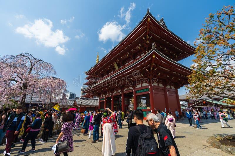 La gente no identificada visita el templo de Sensoji con la flor de cerezo en Asakusa, Tokio, Jap?n foto de archivo