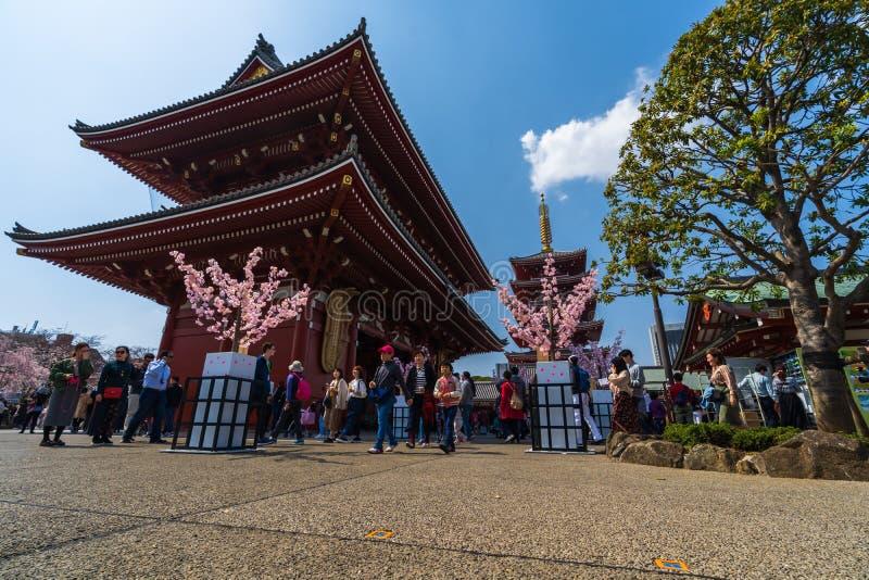 La gente no identificada visita el templo de Sensoji con la flor de cerezo en Asakusa, Tokio, Jap?n fotografía de archivo libre de regalías