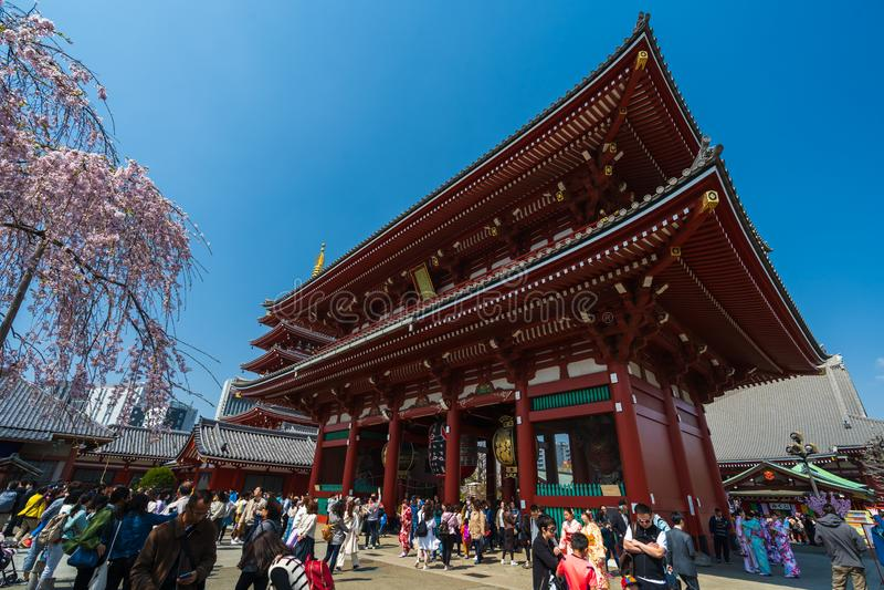 La gente no identificada visita el templo de Sensoji con la flor de cerezo en Asakusa, Tokio, Jap?n fotos de archivo libres de regalías
