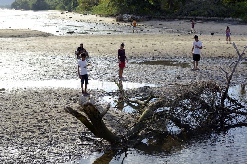 La gente passa il tempo di vacanze estive sulla spiaggia sabbiosa bianca accanto a legname galleggiante immagine stock libera da diritti
