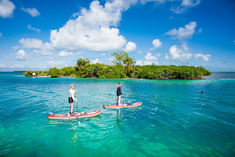 La gente se levanta en el tablero de paleta en el mar de la turquesa del calafate de Caye fotografía de archivo