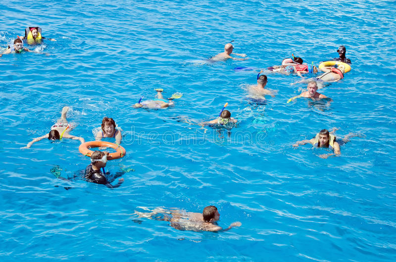 La gente se relaja, nada activamente en el Mar Rojo Actividad, natación, paisaje del agua Egipto, África foto de archivo