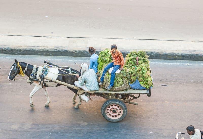 La gente su un carretto trainato da cavalli in India fotografia stock