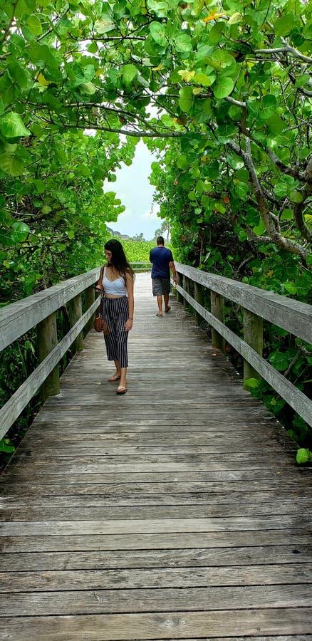 La gente sul sentiero costiero scenico immagine stock