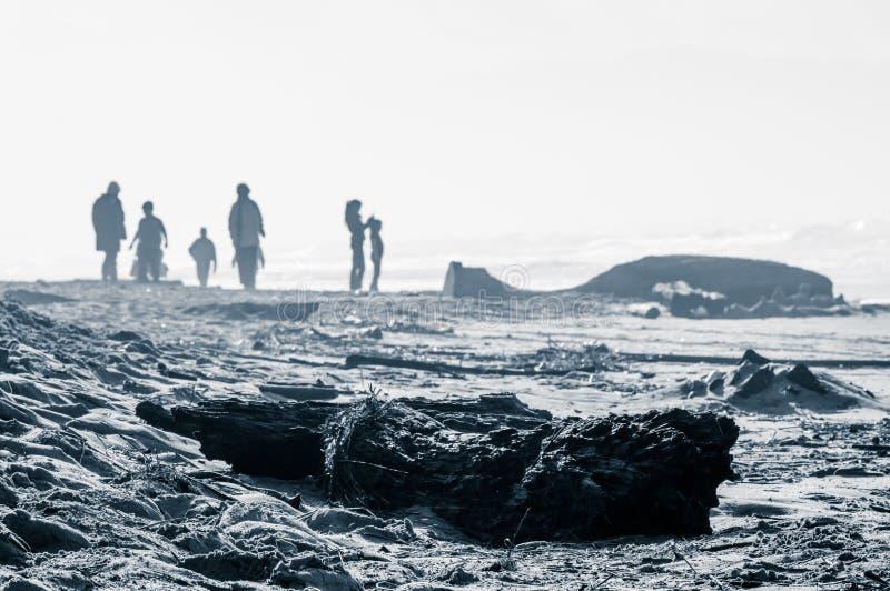 La gente sulla spiaggia ventosa desolata immagine stock