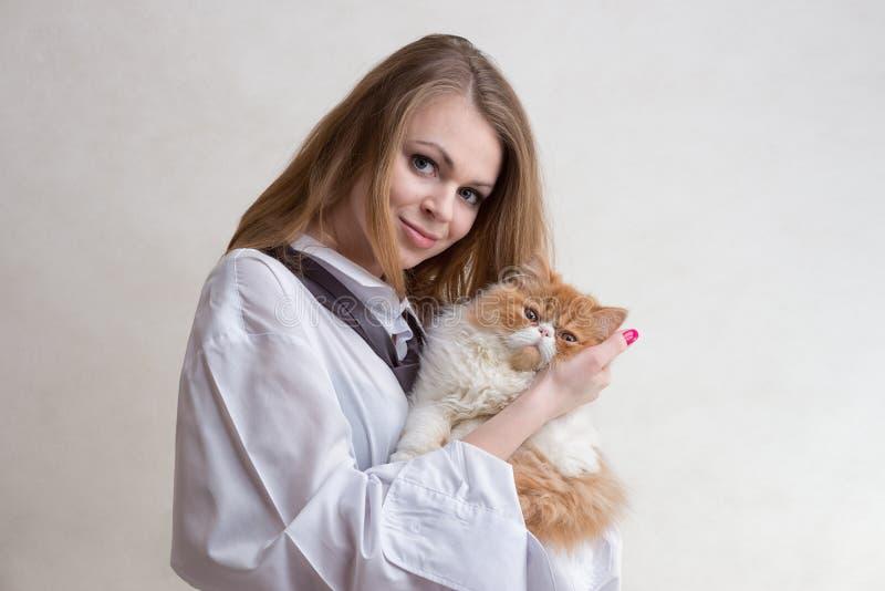 La gentille fille avec un chat rouge sur des mains photos libres de droits