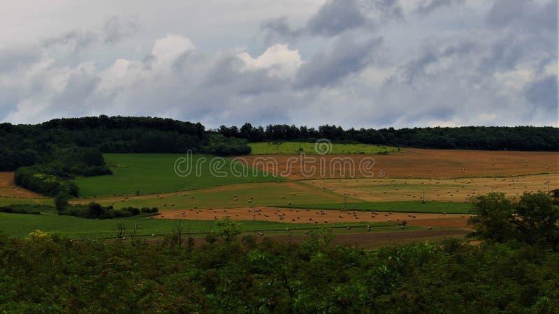 La geometria del campo dopo la tempesta fotografia stock