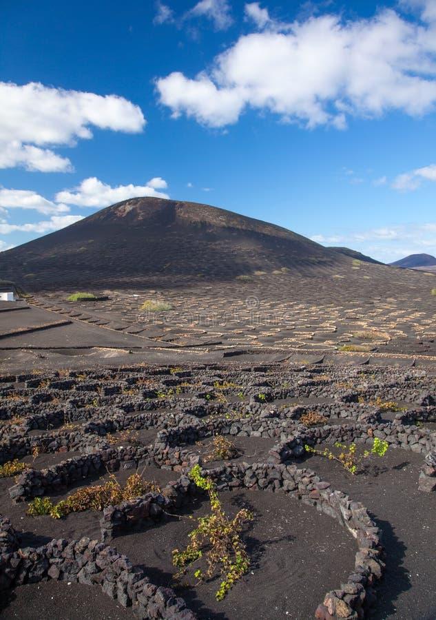 La Geria, Lanzarote, islas Canarias imágenes de archivo libres de regalías