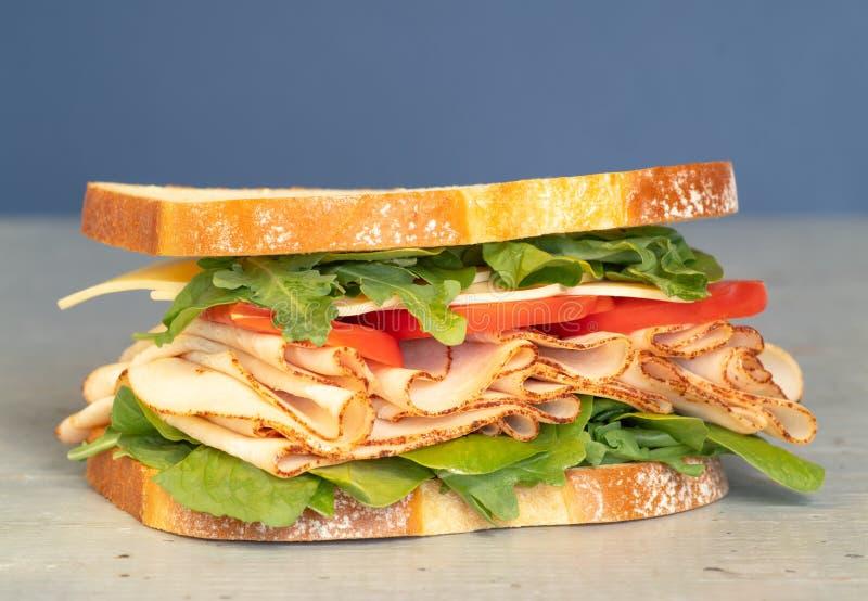 La ghiottoneria appena fatta disegna il panino con lattuga, vari generi di verdure, i pomodori, il formaggio, carni simili al pro immagini stock libere da diritti