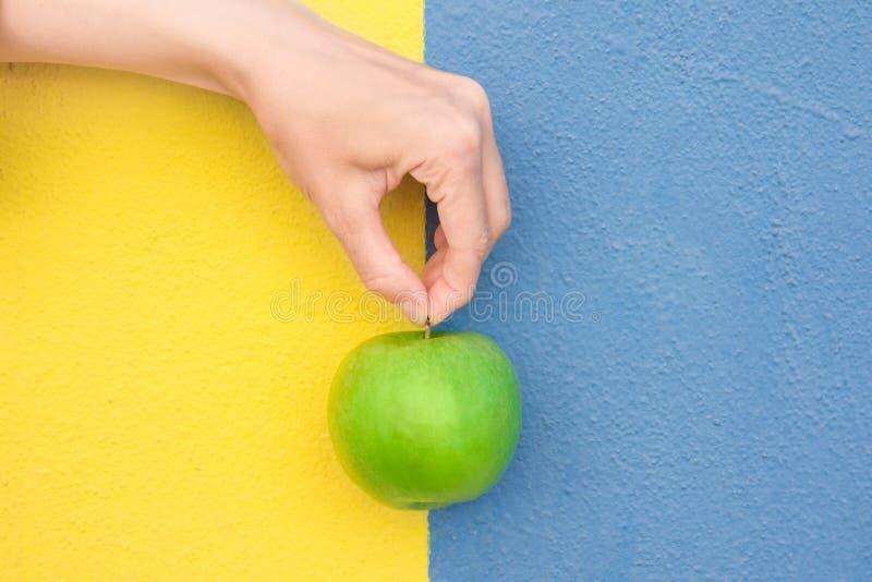 La giovane donna caucasica tiene a disposizione dalla parete dipinta blu giallo bitonale organico di Apple di verde del gambo Veg fotografia stock libera da diritti