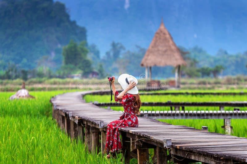 La giovane donna che si siede sul percorso di legno e prende una foto dalla macchina fotografica con il giacimento verde del riso fotografia stock libera da diritti