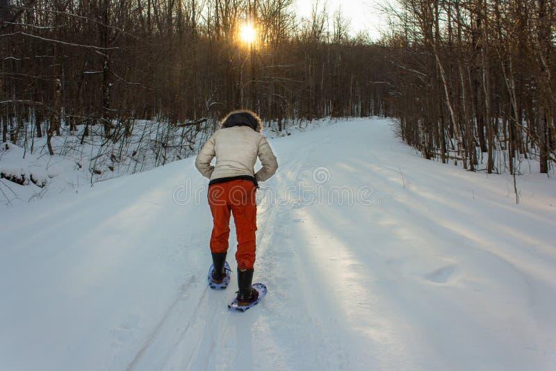 La giovane donna con un rivestimento bianco e un paio dei pantaloni arancio è fare un'escursione in salita immagini stock libere da diritti