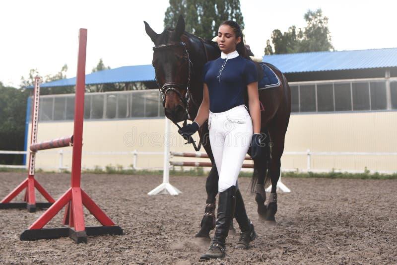 La giovane donna conduce il suo cavallo alla formazione ed a prepararlo per le corse dell'ippodromo immagini stock