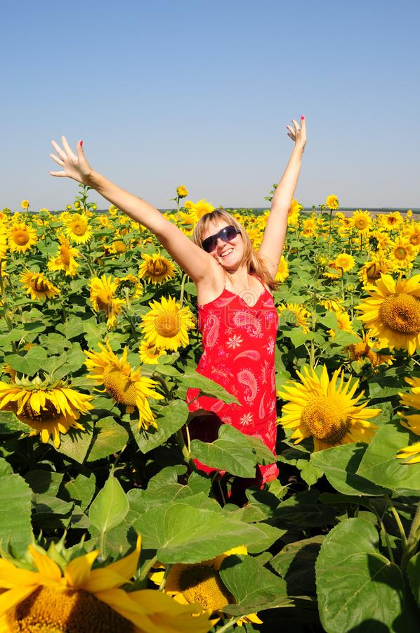La giovane donna graziosa sta fra i girasoli di fioritura con le mani in aumento fino a chiaro cielo blu Donna allegra dei capell fotografie stock