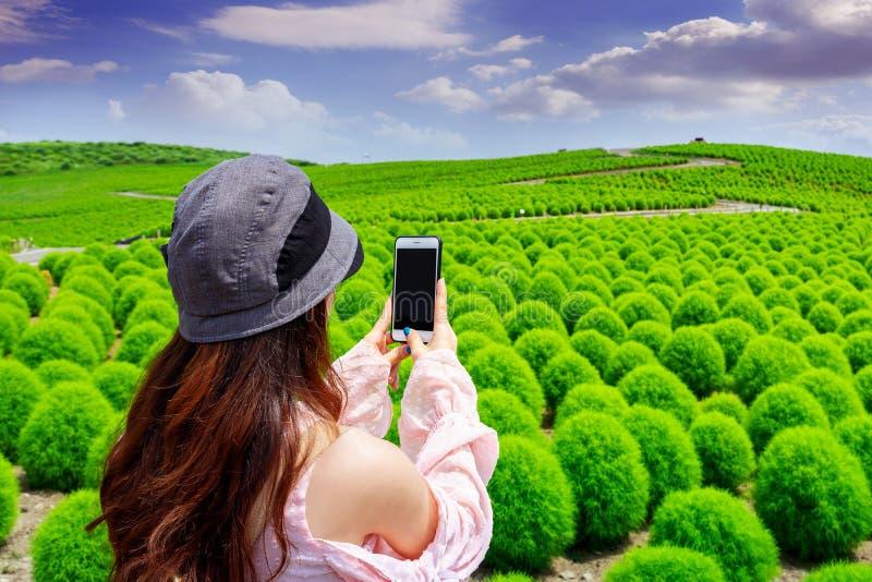 La giovane donna prende le foto al parco di spiaggia di Hitachi, Giappone fotografie stock libere da diritti