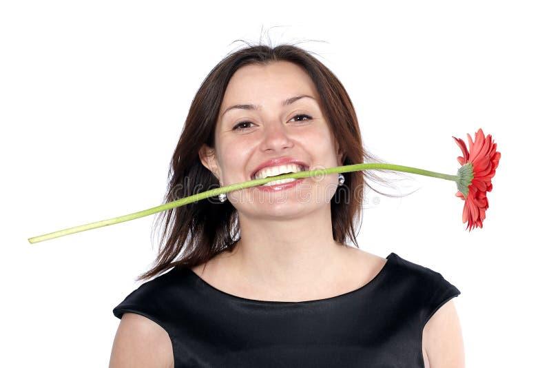 La giovane donna sorridente in vestito nero tiene un fiore della gerbera in denti, isolati sopra fondo bianco immagine stock libera da diritti