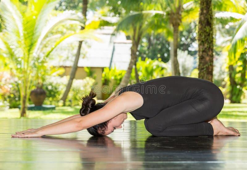 La giovane donna sta praticando l'yoga e i pilates sulla natura fotografia stock