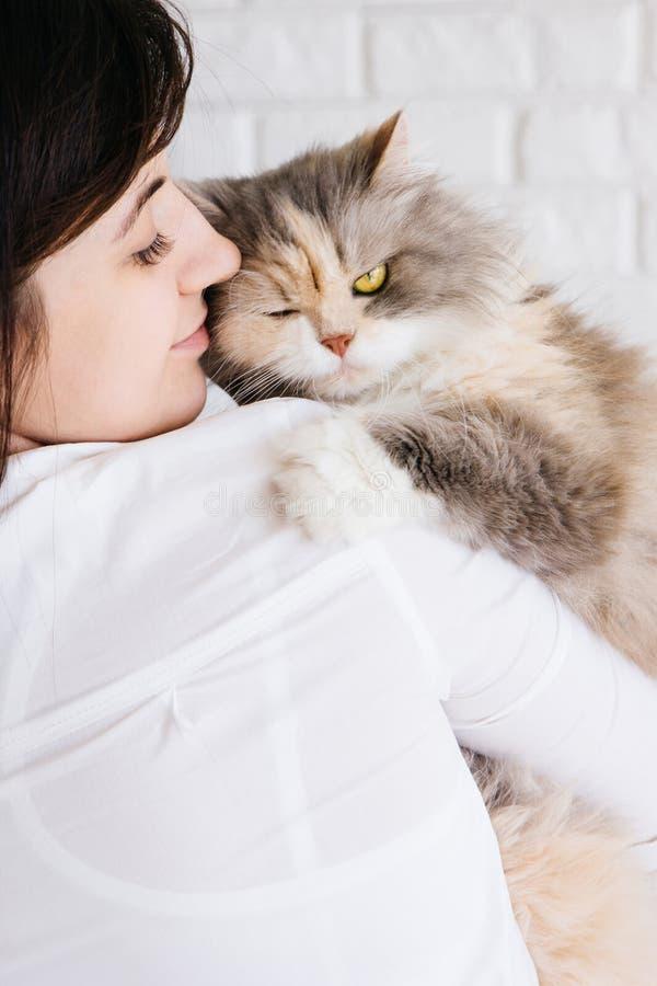 La giovane donna tiene il suo gatto lanuginoso in mani immagini stock