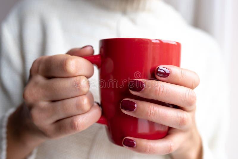 La giovane donna tiene una tazza con una bevanda calda in sue mani immagine stock libera da diritti