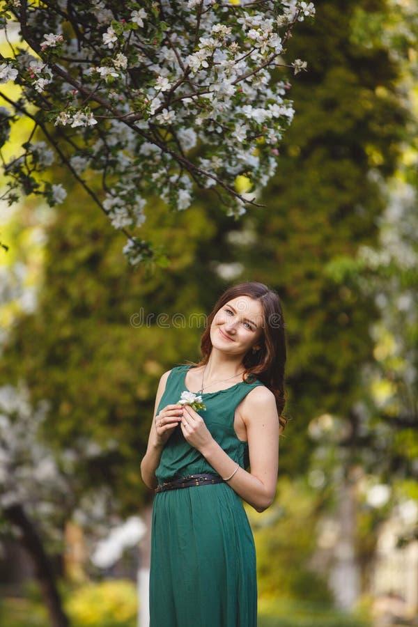 La giovane donna weared in vestito da verde lungo in un giardino di fioritura della mela fotografie stock