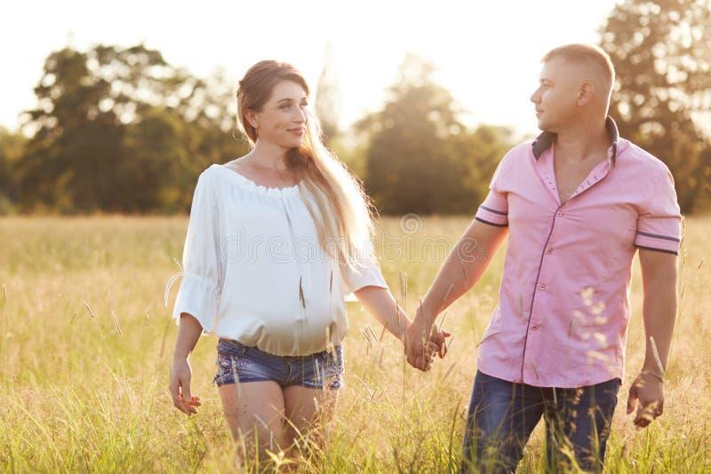 La giovane famiglia felice si tiene per mano e cammina attraverso il campo dell'estate, se esamina con amore La femmina incinta p immagine stock