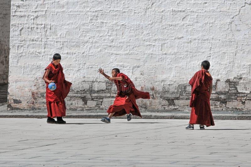 La giovane lama gioca a calcio al tempio di Labuleng, a sud di Gansu, la Cina immagine stock