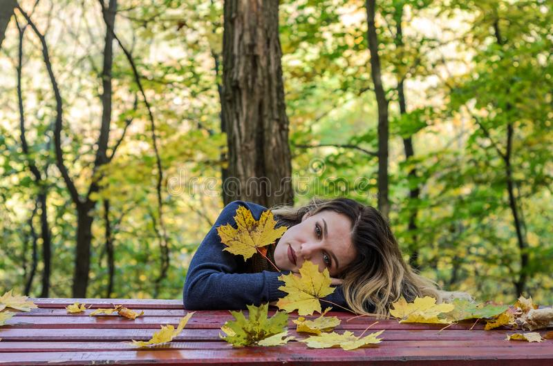 La giovane ragazza affascinante con capelli lunghi sta trovandosi sulla tavola fra le foglie gialle cadute nel parco di autunno immagini stock