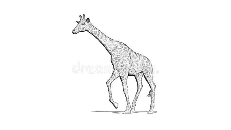 La girafe va avec l'ombre sur le plancher - silhouette de bande dessinée illustration de vecteur