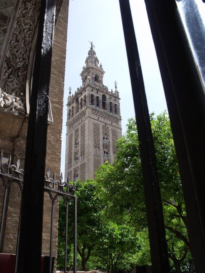 La Giralda Siviglia, Spagna immagine stock