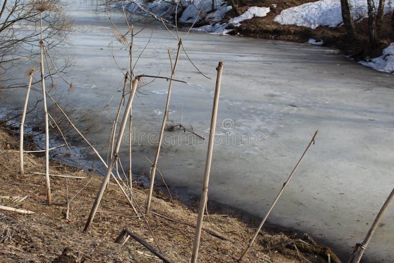 La glace fond en rivière en premier ressort photo libre de droits