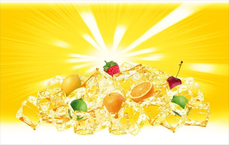 La glace orange porte des fruits côte photos libres de droits