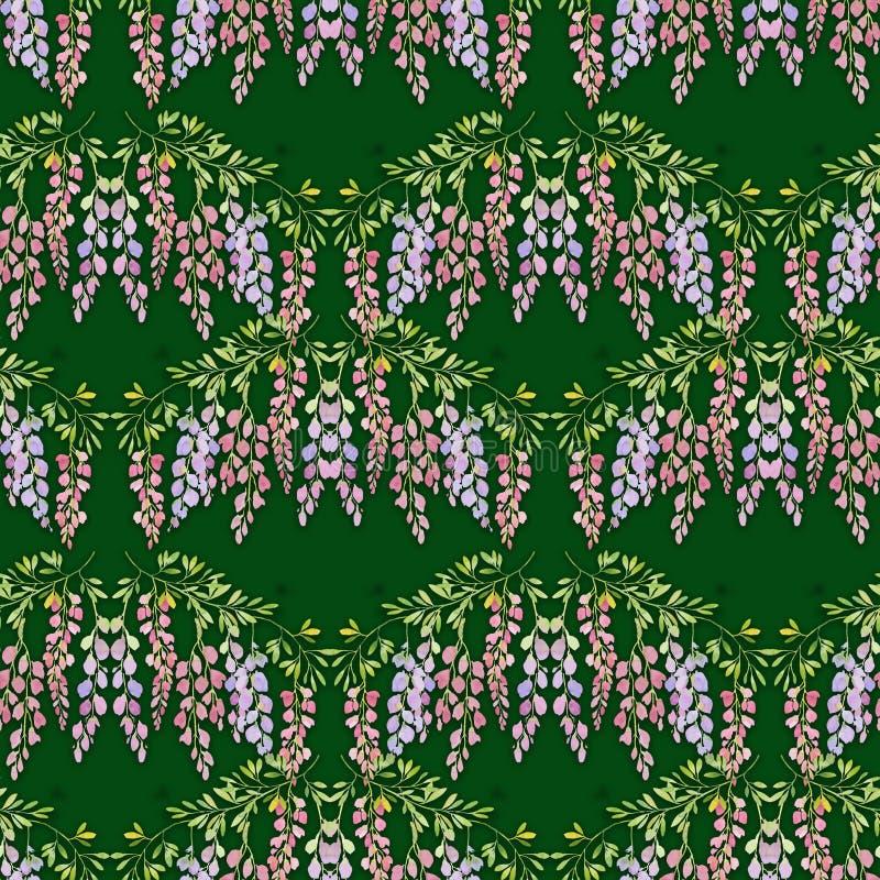 La glycine fleurit le modèle sans couture sur le fond vert, illustration d'aquarelle illustration stock