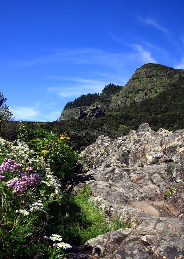 La Gomera,. Canary Island, Spain stock photography