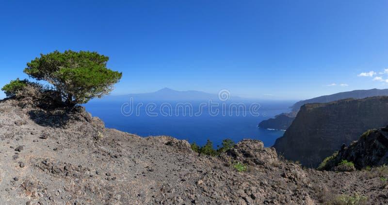 La Gomera - Paesaggio pittoresco con un albero sulla costa nord fotografia stock