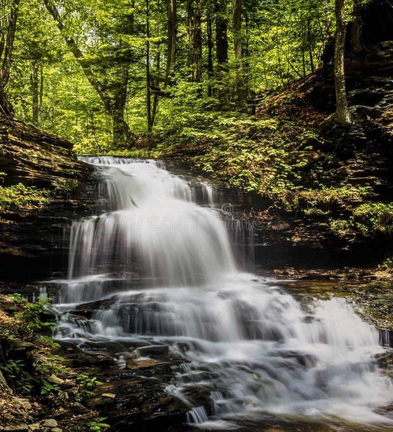 La gorge de Ricketts héberge la région naturelle de gorges images stock
