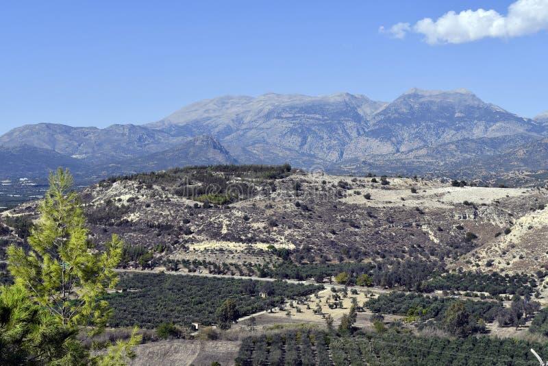 La Grèce, île de Crète, paysage avec Plantagenet olive images stock