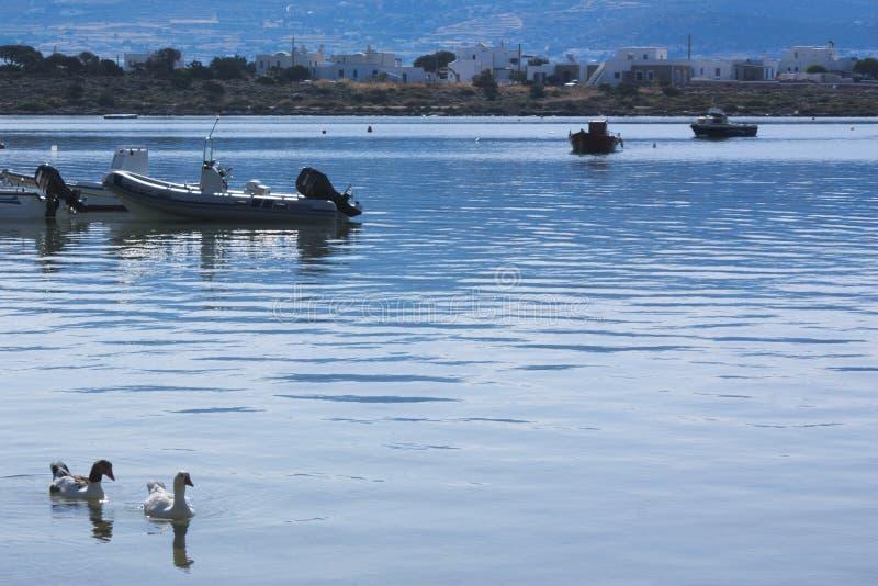 La Grèce, l'île d'anti Paros Les eaux placides du port de l'île photo libre de droits