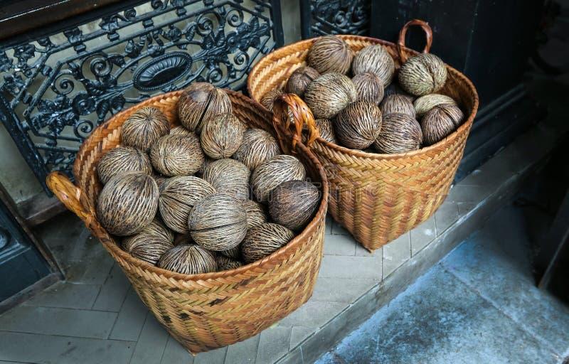 La graine des oddloam secs de Cerbera avec le panier (Puanteur-puanteur, Othalanga, s image stock