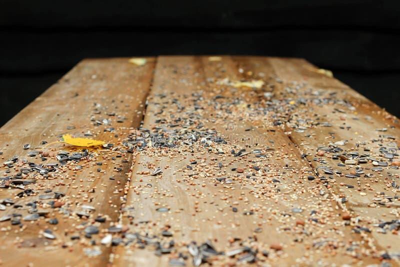 La graine pour les oiseaux sur la table en bois photo stock