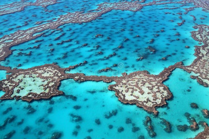 La Grande barrière de corail magnifique images libres de droits