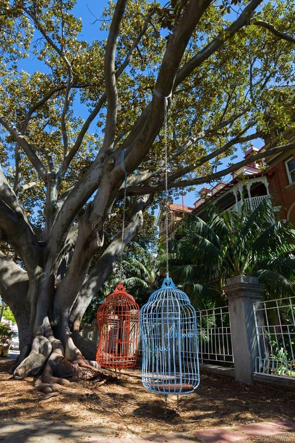 La grande cage à oiseaux deux de taille humaine pose pendre de la baie F de Moreton photos libres de droits