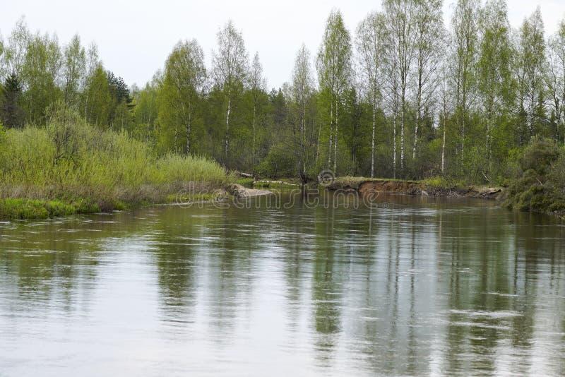 La grande eau en premier ressort image stock