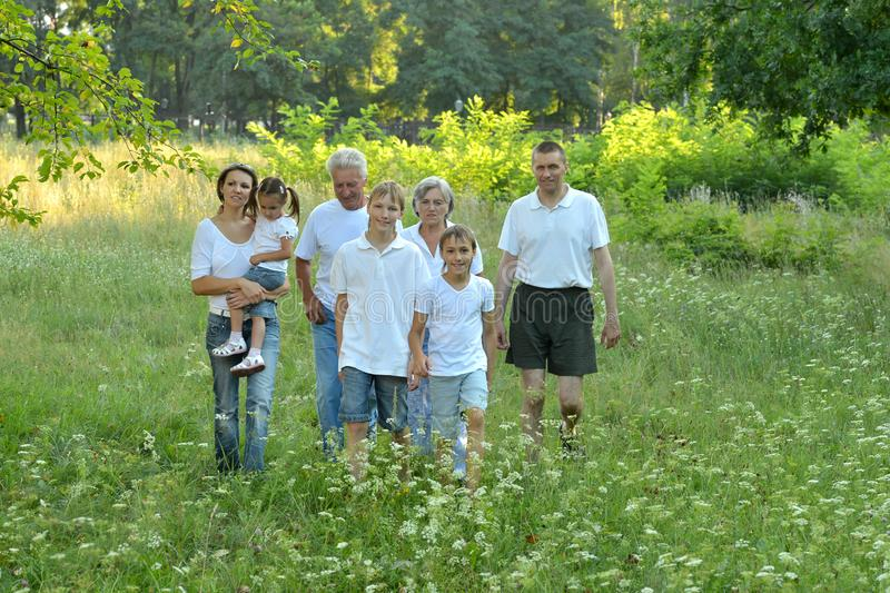 La grande famiglia sta divertendosi nel parco dell'estate immagine stock