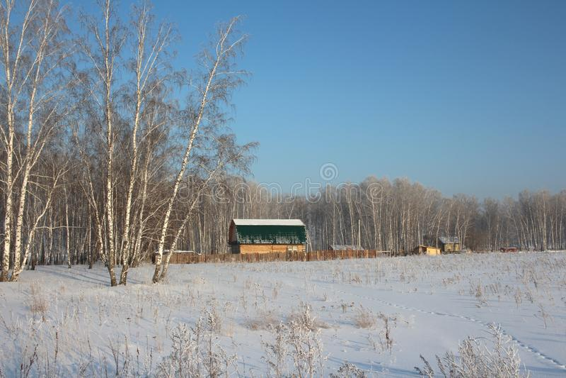 La grande hutte en bois de maison de village se tient dans la forêt parmi les congères en hiver dans le village photographie stock